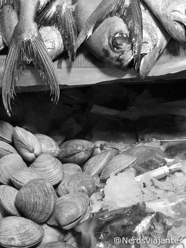 Peixes e frutos do mar no mercado de Santiago - Chile