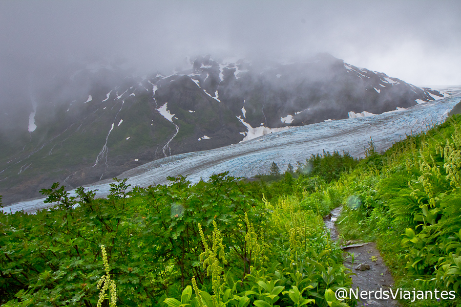 Trilha do Harding Icefield - Kenai Fjjords National Park