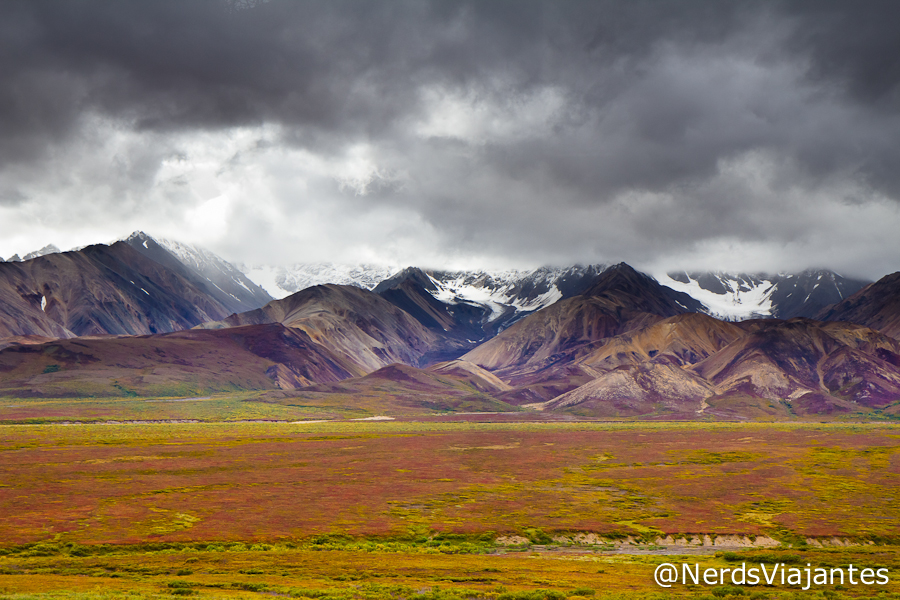 Lindas cores do outono no Denali National Park - Alasca