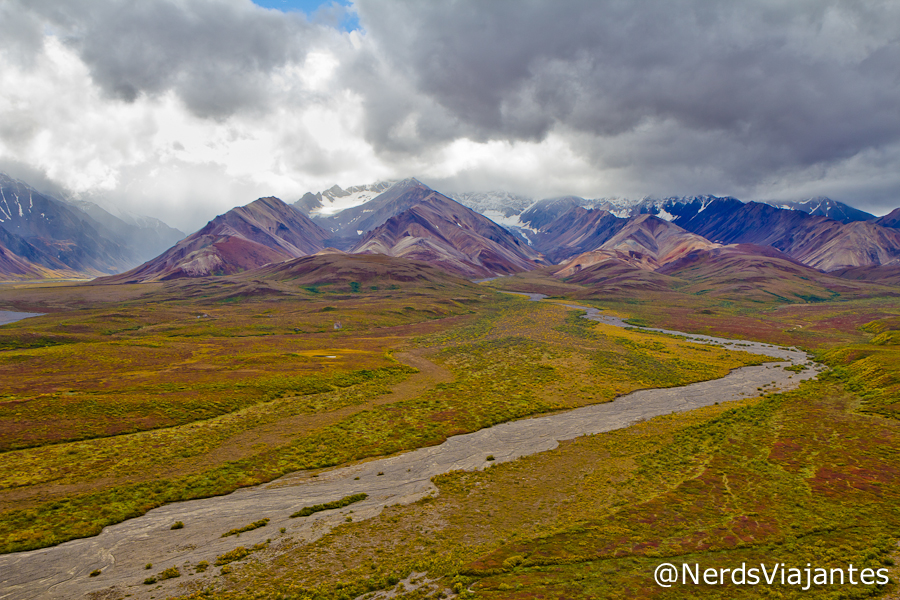 Polychrome Pass - Denali National Park