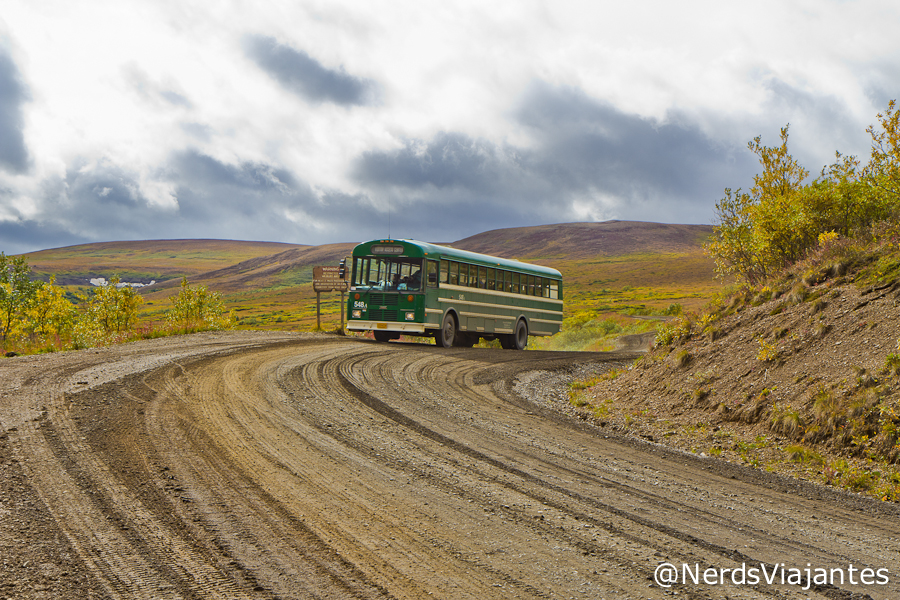 Shuttle bus na Denali Park Road