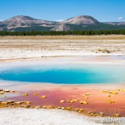 Opal Pool - Yellowstone National Park - Wyoming - Estados Unidos