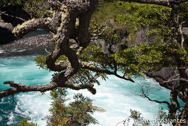 Rio Petrohué nos Saltos del Petrohué - Chile