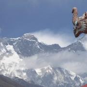 O Dragão e a Montanha. Foto: Jodrian Freitas - Aventura Mango