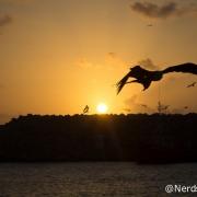 Pôr do Sol no Porto - Fernando de Noronha