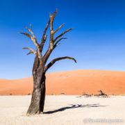 Roteiro de Viagem - Namíbia