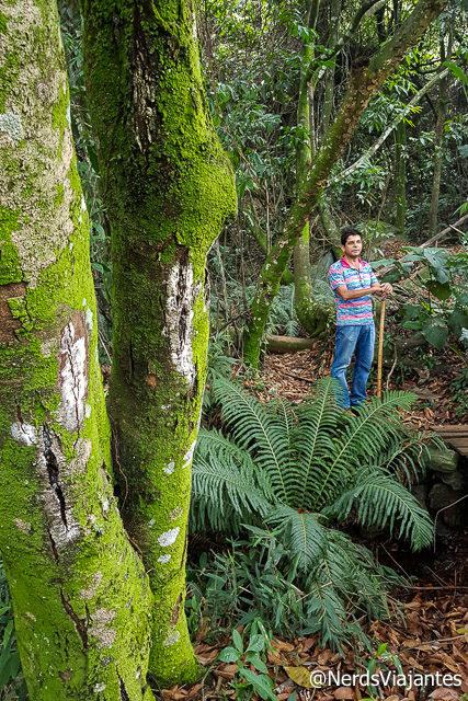 Trilha na Pousada das Nascentes em Catas Altas - Minas Gerais